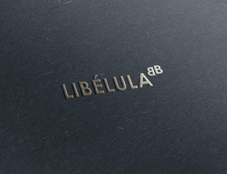 Mucha Libélula 4